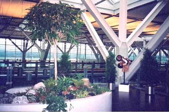 zen gardens indoor gardens